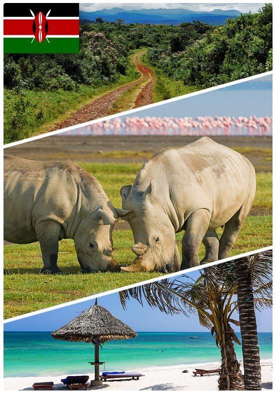 safari dovolená v Keni