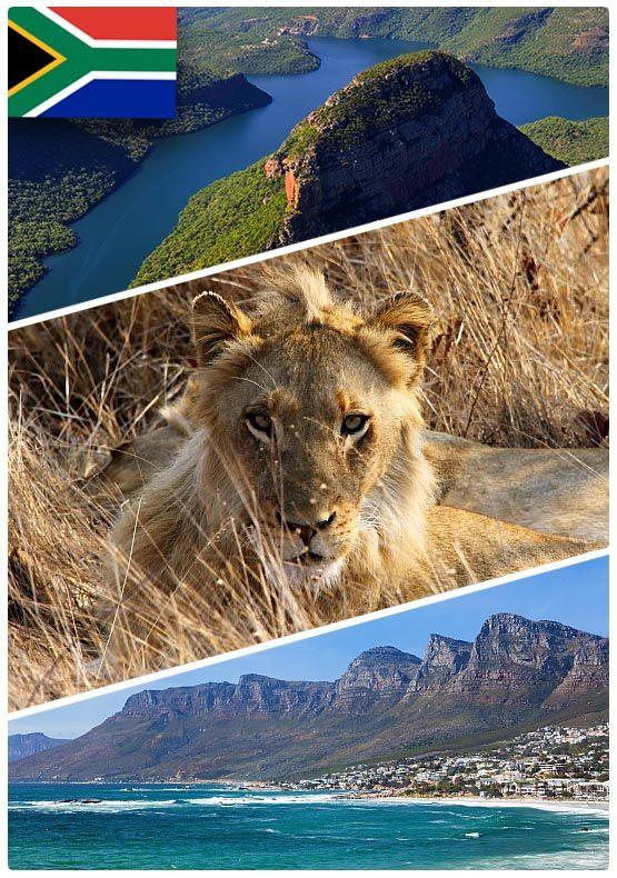 Safari dovolená v Jihoafrické Republice (JAR) na míru